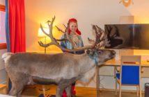 Det ble litt ståhei da Anne Louise Næss Gaup tok med seg et reinsdyr inn på ett av rommene på Scandic-hotellet i Karasjok. (Foto: Scandic Karasjok/Kjell Sæther)